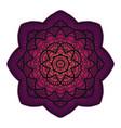gradient mandala circle ethnic ornament hand vector image