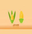 high quality design sweet golden corn with vector image vector image