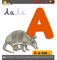 letter a with cartoon armadillo vector image vector image