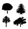 set of trees icons isolated on white background vector image
