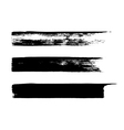 Set of grungy brushes vector image
