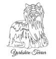 yorkshire terrier dog outline vector image