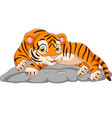 cartoon tiger laying down on stone vector image vector image