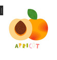 food patterns fruit apricot vector image