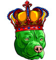 green dog with crown in white vector image vector image