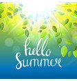 Hello summer natural background