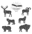 large animals in north america vector image