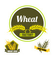 set logo wheat factory circle green badge vector image