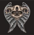 skull horn wing vector image vector image
