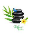 spa zen background vector image vector image