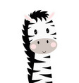 cartoon cute zebra isolated on white background vector image