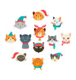 collection cute cat wearing many accessory in the vector image vector image