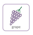 grape bunch icon purple berry outline flat sign vector image
