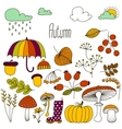 Hand drawn doodle Autumn icons set vector image vector image
