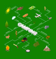 hiking in a park concept infographics 3d isometric vector image vector image