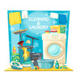home service house cleaning and laundry wash vector image