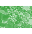image collage of ripening grapes on the vine from vector image vector image