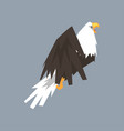 north american bald eagle character symbol of usa vector image vector image