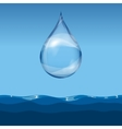 Realistic transparent water drop vector image vector image