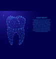 tooth dental root from futuristic polygonal blue vector image