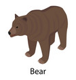 bear icon isometric style vector image vector image
