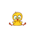 flat cute chicken chick sitting vector image vector image