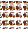 gyros pattern texture design vector image vector image
