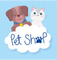 pet shop cute little dog and cat cloud paw vector image vector image
