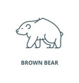 brown bear line icon linear concept vector image