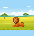 cute lion sitting in the african landscape vector image vector image