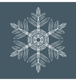 Decorative Snow flake vector image vector image