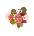 delicious vegetarian salad healthy food tasty vector image