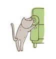 disobedient cat scratching sofa isolated on white vector image vector image