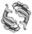 koi carp monochrome version vector image vector image