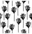 palm trees seamless pattern black on white vector image