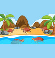scene with sea turtles swimming in sea vector image