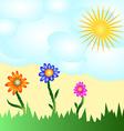 Solar flower card vector image vector image