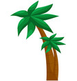 tropical plant from exotic summer location palm vector image