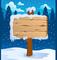 winter labels theme image 5 vector image vector image