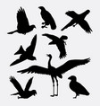 bird activity silhouette vector image vector image