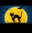 halloween growl black cat bat moon graveyard vector image vector image