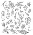 large set hand-drawing flowers vector image vector image
