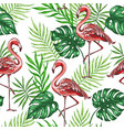 pattern with green leaves and pink flamingo vector image