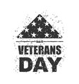 veterans day in usa flag america folded in vector image vector image
