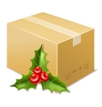 Christmas box icon Mistletoe vector image vector image
