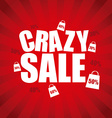 crazy sale vector image