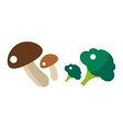 Fresh green broccoli and mushrooms isolated vector image
