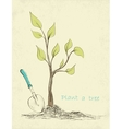 tree planting vector image