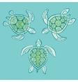 Decorative turtles in water vector image vector image