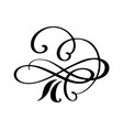hand drawn flourish calligraphy elements vector image